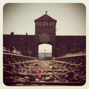 Train tracks leading into Auschwitz